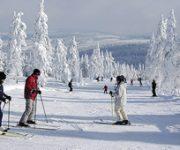 Lyžování – Zimní sporty